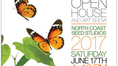 20th Anniversary Party – North Coast Seed Open Studios This Saturday